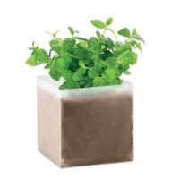 Compost met mint zaadjes